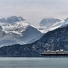 Cruising Glacier Bay National Park, Alaska  by Lanis Rossi