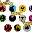 What's Your (Pokemon) Type? by ParadoxyIntent