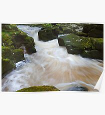The Strid, Bolton Abbey. Poster