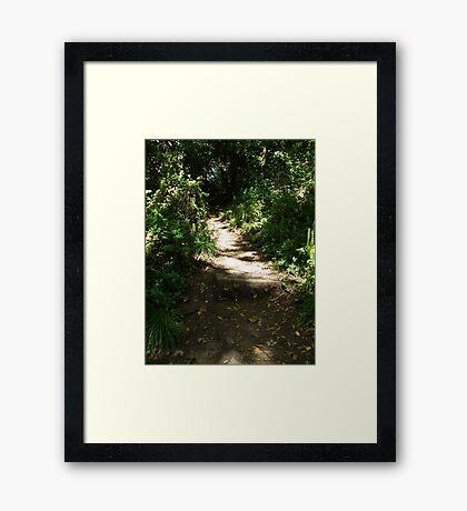 Dreamy walk Framed Print