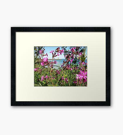 A sea view Framed Print