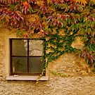 window for autumn  by anisja