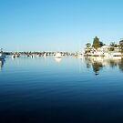 Swan River Becalmed Winter 2015 by Robert Phillips