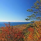 """""""Autumn Lake Superior"""" by MarieR"""