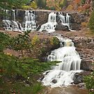 """""""Gooseberry Falls of Autumn"""" by MarieR"""