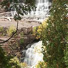 """""""A Glimpse of Gooseberry Falls"""" by MarieR"""