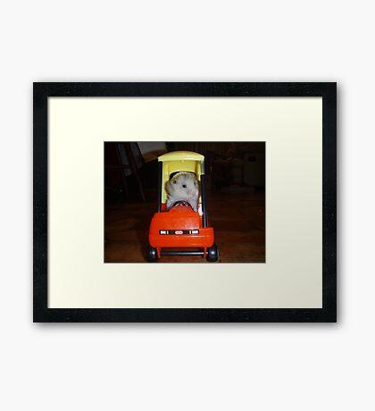 Hamster trip Framed Print