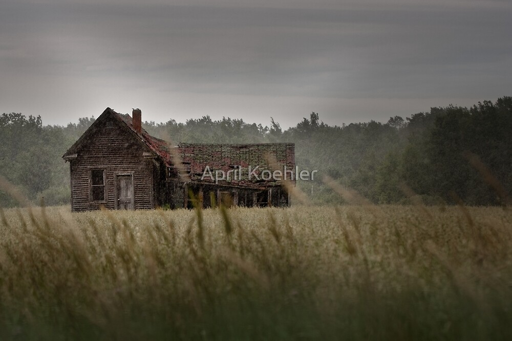 Abandoned in the Rain by April Koehler