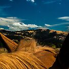 Reba's View by Laddie Halupa