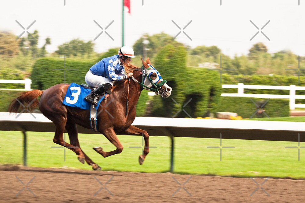 A Jockey Leads His Horse to Victory by Buckwhite