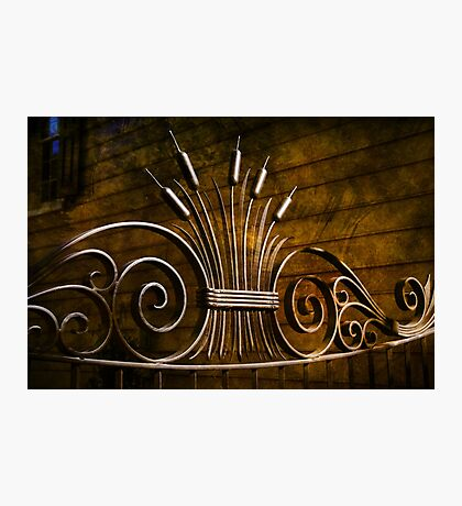 Iron Work Photographic Print