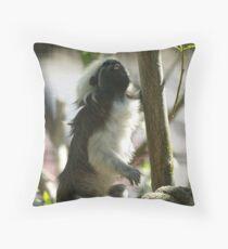 Cottontop Tamarin (Saguinus oedipus) Throw Pillow