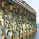 Under the Pier by DebbieCHayes