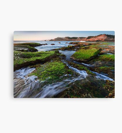 Rock Walker Canvas Print