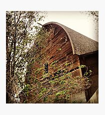 Rustic A Frame Barn Lost in the Trees Photographic Print