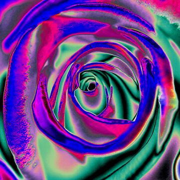 Blue and pink psychadelic Rose T by zyonchilde