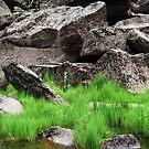 Cataract Gorge Rocks 1C  by MyceanSage