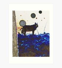 Top Dog And Orbs At Midnight Art Print