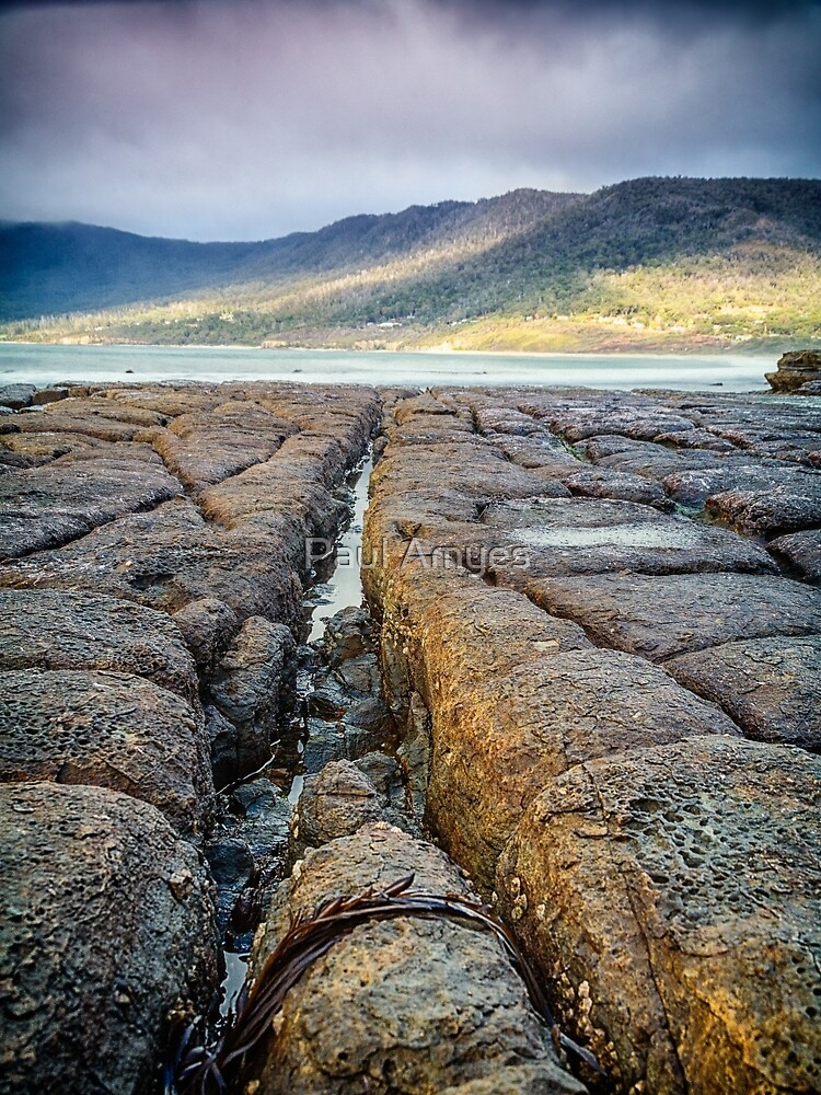 Tessellated Pavement by Paul Amyes