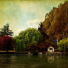 On the Eure river - France by Jean-Pierre Ducondi