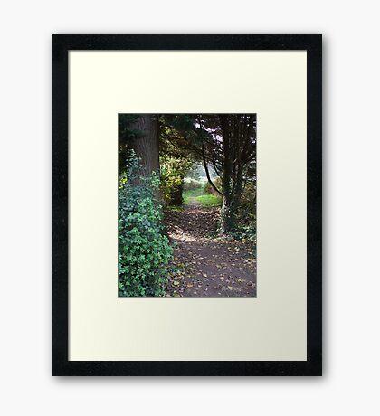 A walk to the park Framed Print