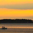 Boat, Sunset, Jonesport, Maine by fauselr