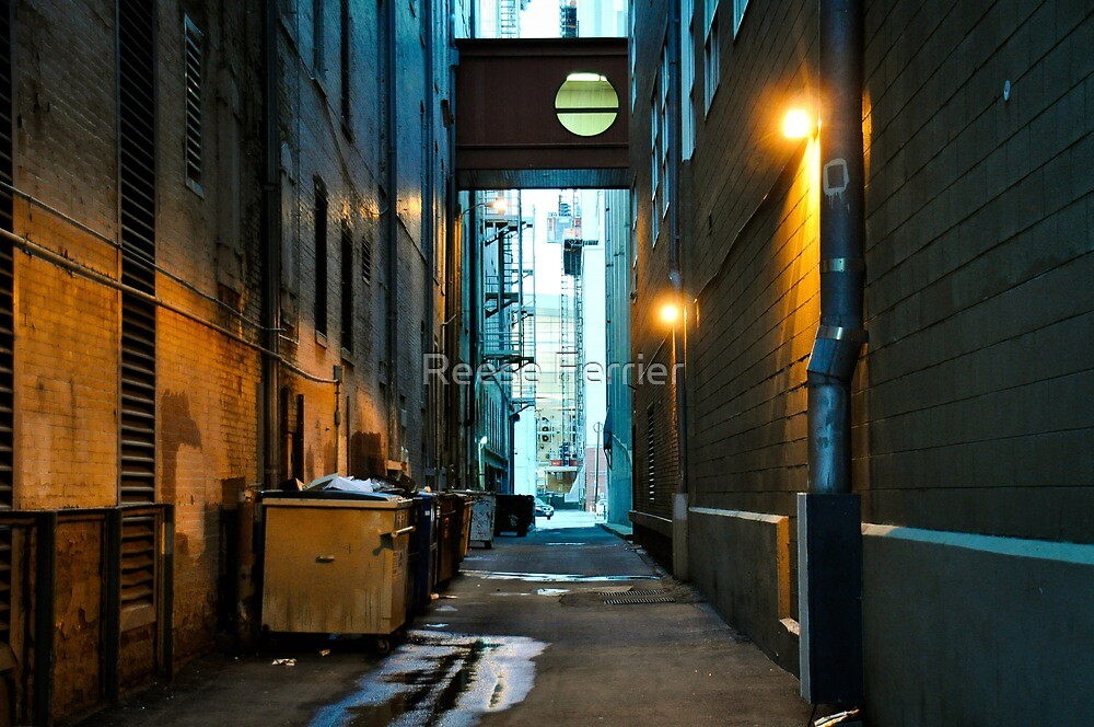 16th St Ally by Reese Ferrier