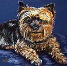 Yorkshire Terrier by Susan McKenzie Bergstrom