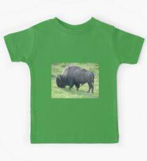 Yellowstone Bison Kinder T-Shirt