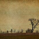 Autumn Fields by Jean-Pierre Ducondi