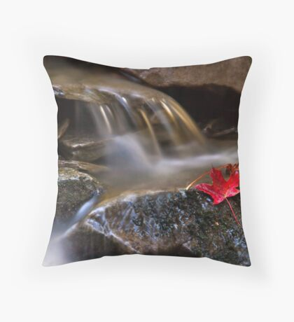 Watermark Throw Pillow