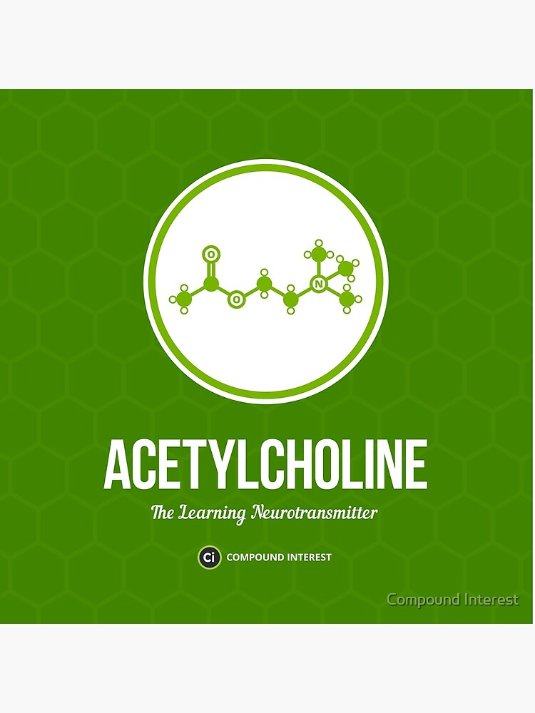 Neurotransmitter Serie: Acetylcholin von compoundchem