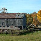 Old Barn ... by Larry Llewellyn