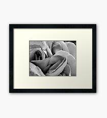 Simple soft folds Framed Print