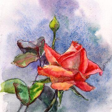 Rose by VVilka