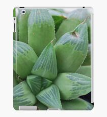 Living Lolly iPad Case/Skin