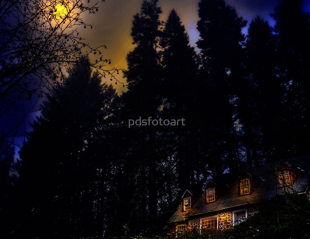 Old brick home by pdsfotoart