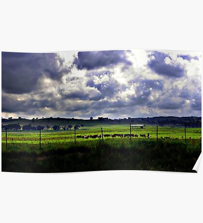 Overcast Meadow Poster