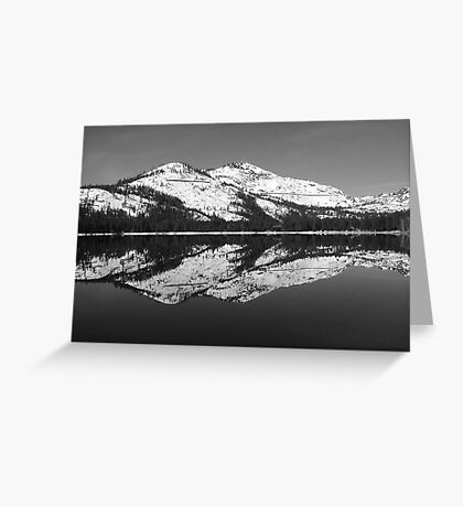 Donner Black and White Greeting Card