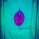 Magic Autumn ...Lost by Yukska