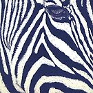 Serengeti Stripes by emilyRose3