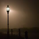 Misty Street Light by Murray Wills