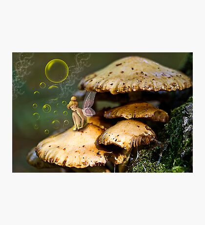 Fairy in the Dell Photographic Print