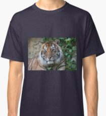tiger at the zoo Classic T-Shirt