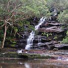 Sombersby Falls - NSW Australia by Bev Woodman