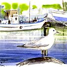 Seagull: Hout Bay, Capetown by Tom Godfrey