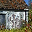 Weathered by brianboyce50