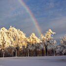 Frozen4 by KerrieLynnPhoto