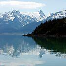 Alaska by KerrieLynnPhoto