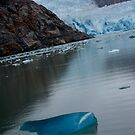 Tracy Arm Fjord, Alaska by KerrieLynnPhoto